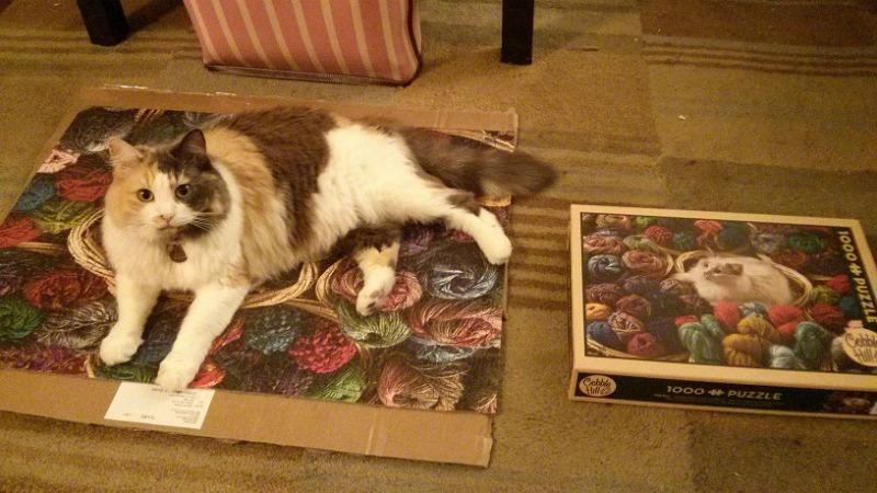 Bella Puzzle